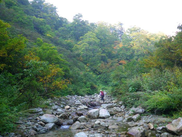 紅葉の朝日連峰祝瓶山コカクナラ沢 ~ 2012年10月22日_f0170180_19111130.jpg
