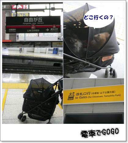 f0185804_20123376.jpg