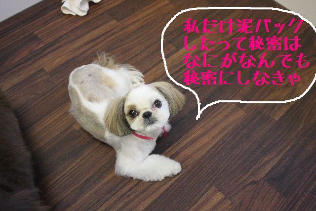 こんばんわぁ~~!!_b0130018_23552944.jpg