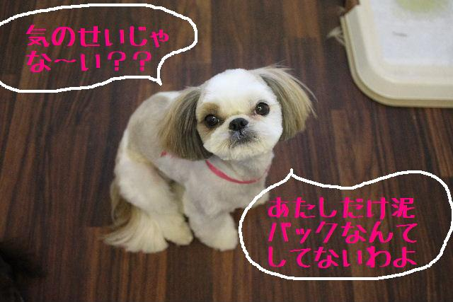 こんばんわぁ~~!!_b0130018_23553930.jpg
