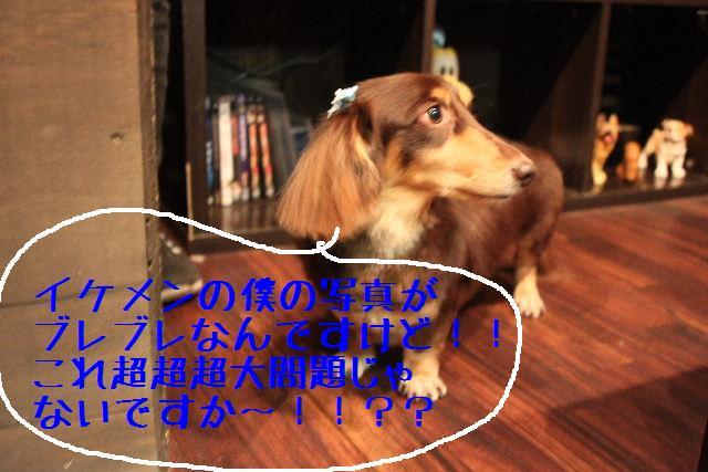 こんばんわぁ~~!!_b0130018_23574952.jpg