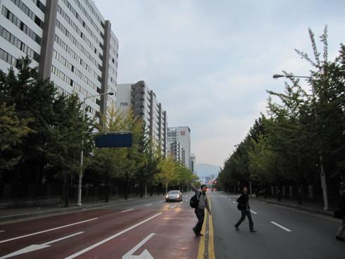 Day1:ソウルの家庭訪問_d0026830_1427869.jpg
