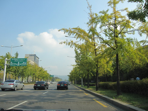 Day2:束草へグルメドライブ_d0026830_14323473.jpg
