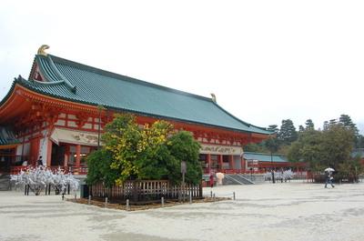 平安神宮 左近の桜、右近の橘_a0237937_6133972.jpg