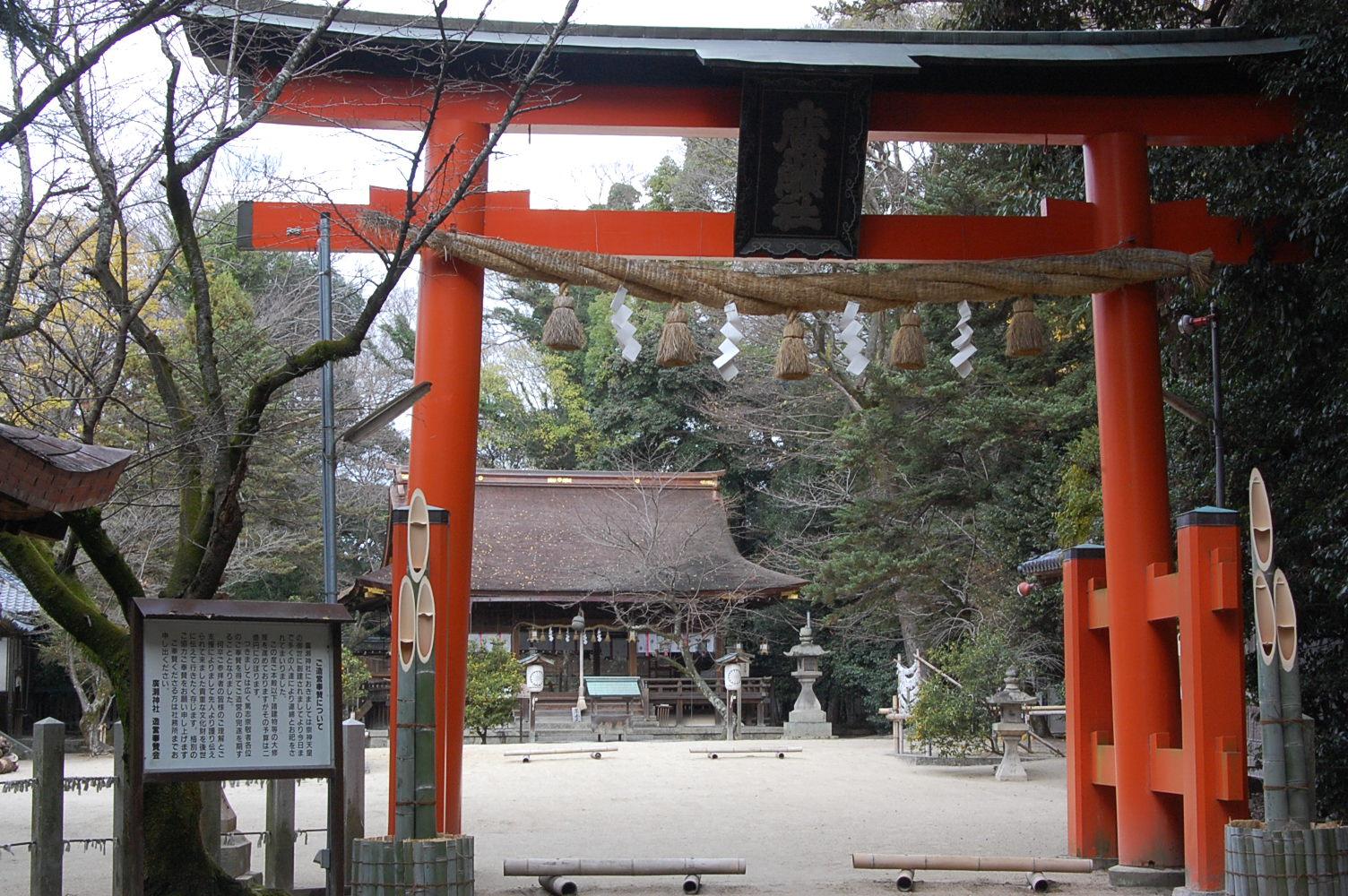 平安神宮 左近の桜、右近の橘_a0237937_621334.jpg