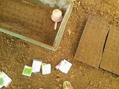 家庭菜園デイ_e0131462_15321594.jpg
