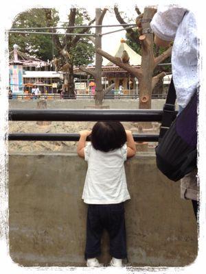 動物園でヨガ!_e0258469_7154074.jpg