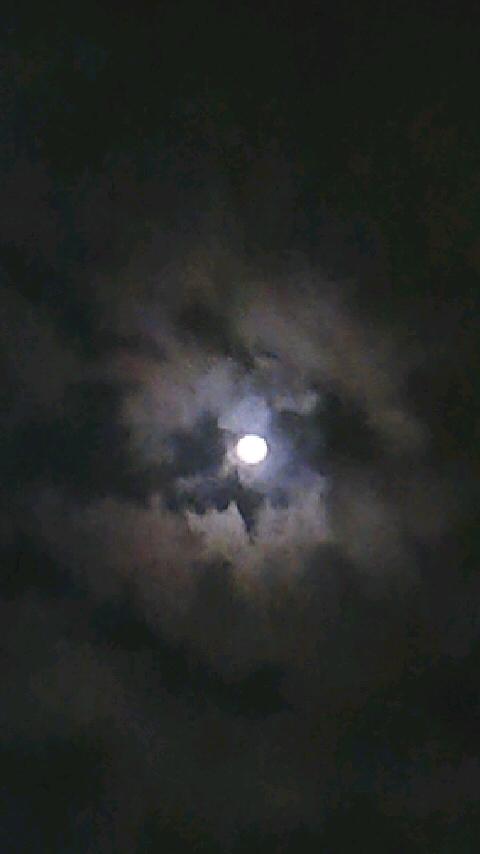b0041576_118868.jpg
