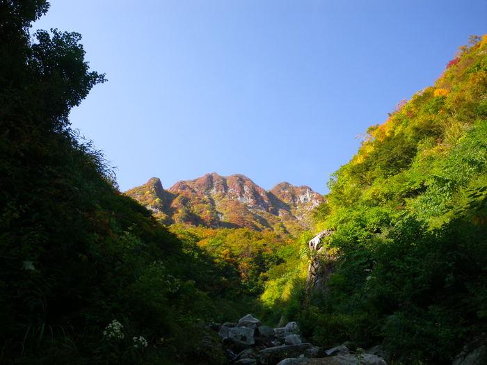 紅葉の朝日連峰祝瓶山コカクナラ沢 ~ 2012年10月22日_f0170180_1572660.jpg