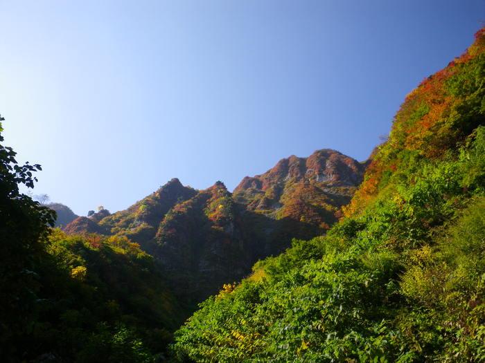 紅葉の朝日連峰祝瓶山コカクナラ沢 ~ 2012年10月22日_f0170180_2494196.jpg