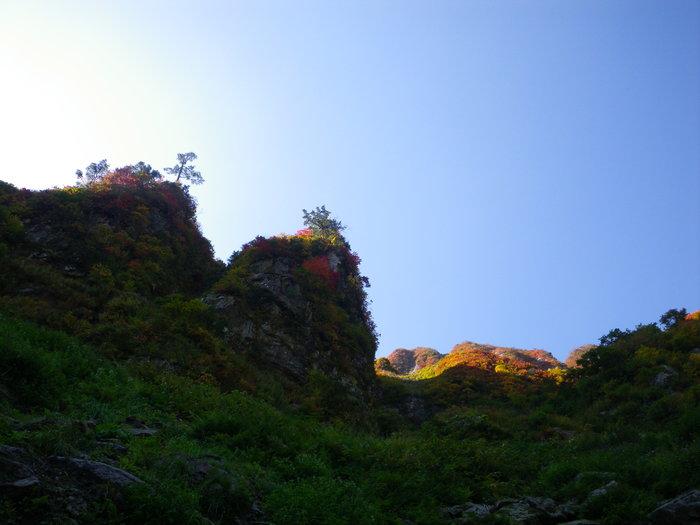 紅葉の朝日連峰祝瓶山コカクナラ沢 ~ 2012年10月22日_f0170180_258264.jpg