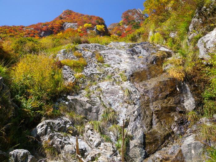 紅葉の朝日連峰祝瓶山コカクナラ沢 ~ 2012年10月22日_f0170180_3381050.jpg