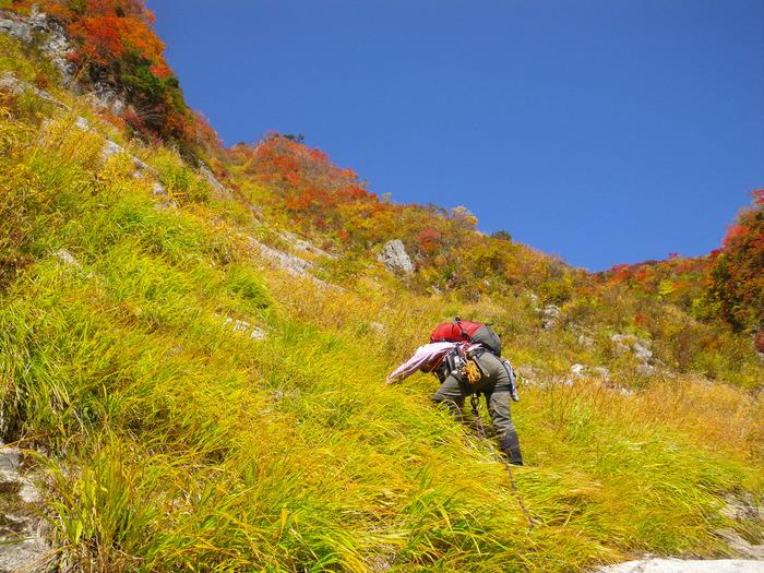 紅葉の朝日連峰祝瓶山コカクナラ沢 ~ 2012年10月22日_f0170180_3444922.jpg
