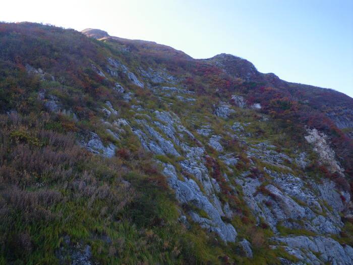 紅葉の朝日連峰祝瓶山コカクナラ沢 ~ 2012年10月22日_f0170180_432240.jpg