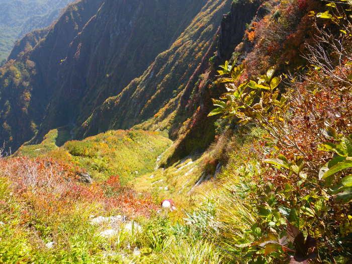 紅葉の朝日連峰祝瓶山コカクナラ沢 ~ 2012年10月22日_f0170180_443459.jpg