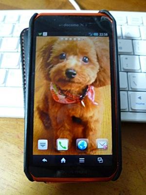 携帯をスマフォに換えました、まだうまく使えないけど。。(゚∇^*) テヘ♪_b0175688_21554383.jpg