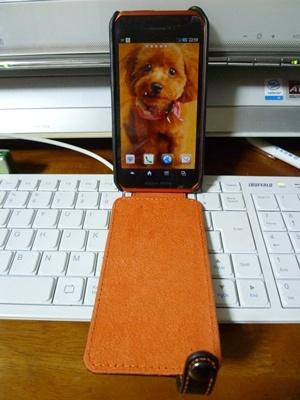 携帯をスマフォに換えました、まだうまく使えないけど。。(゚∇^*) テヘ♪_b0175688_215666.jpg