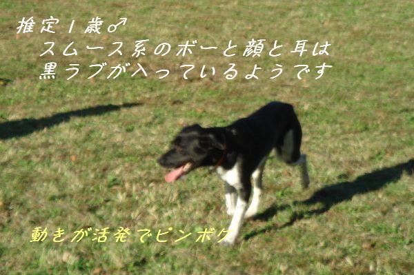b0101991_17141578.jpg