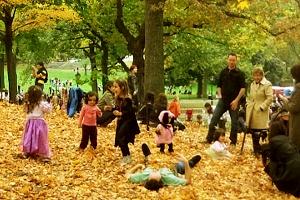 NYのセントラルパークの落ち葉のじゅうたん_b0007805_1323091.jpg