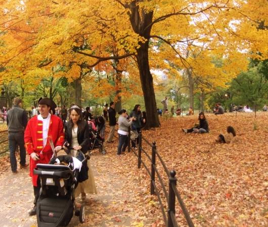 NYのセントラルパークの落ち葉のじゅうたん_b0007805_133530.jpg