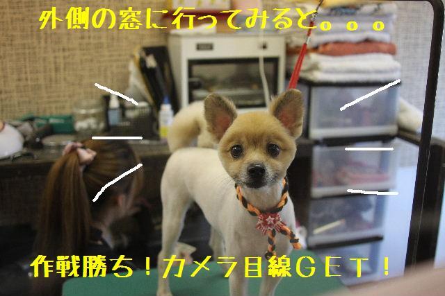 こんばんわぁ~~!!_b0130018_004312.jpg