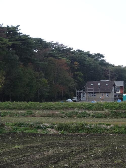 赤松林の似合う家_a0288621_222137.jpg