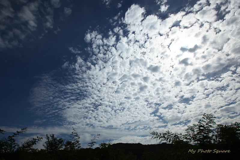 秋の空_c0167028_20201427.jpg