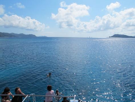 10月28日久しぶり、この天気と海でケラマダイビング_c0070933_22481481.jpg
