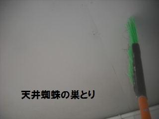 f0031037_1973187.jpg