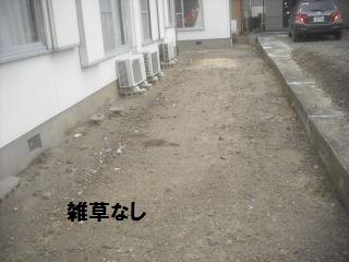 f0031037_1973949.jpg