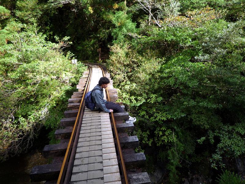 屋久島の旅1_b0216341_11192432.jpg