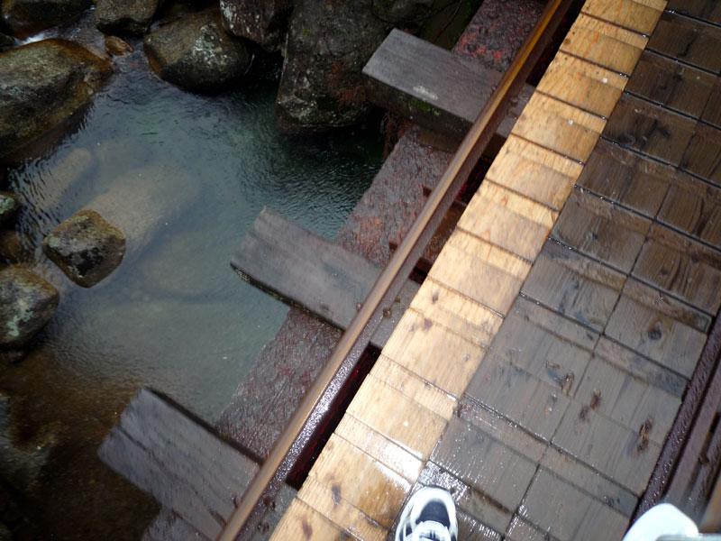 屋久島の旅1_b0216341_11465.jpg
