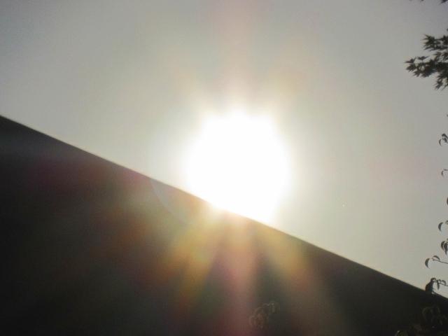 祇園・東山(花見小路・知恩院・円山公園)を散策9・27_e0237645_22451328.jpg