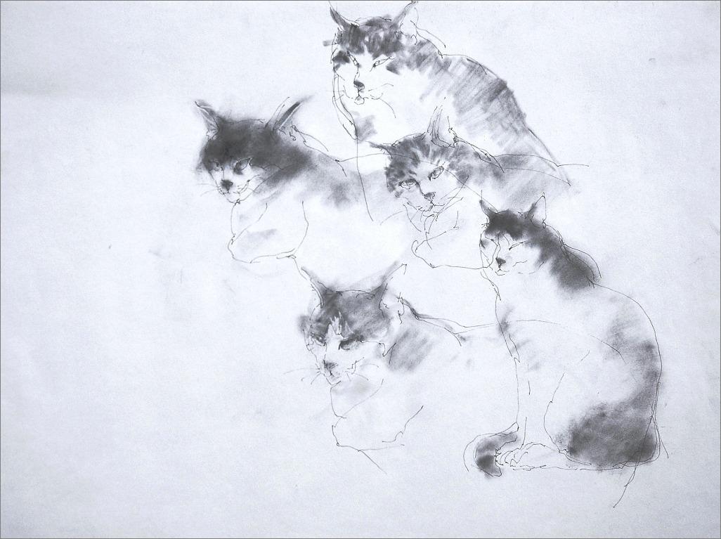 《 クロッキー ・・・ 猫 》_f0159856_5204894.jpg