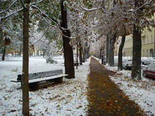 Der erste Schnee_e0116763_20113827.jpg
