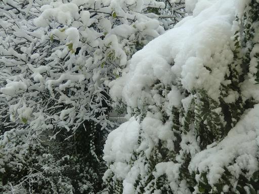 冬時間と初雪_f0226671_17184651.jpg