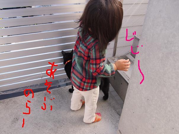 d0009175_20164140.jpg