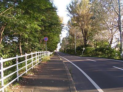 3線から茨戸へ_f0078286_0184744.jpg