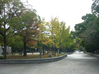 初めての広島。_e0188087_11324851.jpg