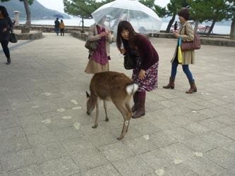 初めての広島。_e0188087_11424269.jpg