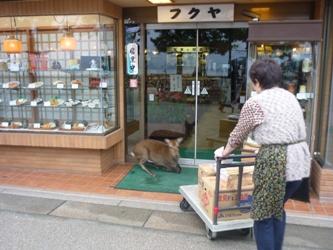 初めての広島。_e0188087_11513770.jpg