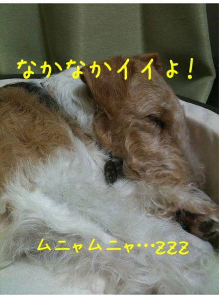 a0299108_0275783.jpg