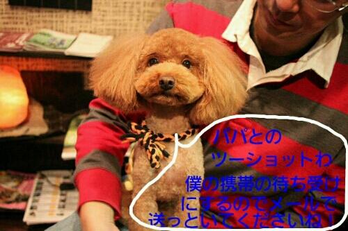 b0130018_20104566.jpg