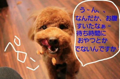 こんばんわ♪_b0130018_2052298.jpg