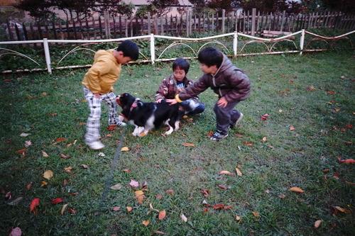 子供と遊んで大喜び_c0051132_216995.jpg