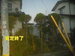 f0031037_22173597.jpg