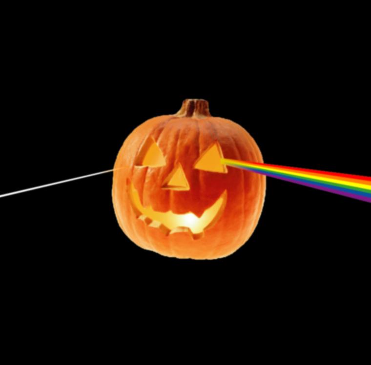 明日10月30日(火)は定休日です_e0121640_15585525.jpg