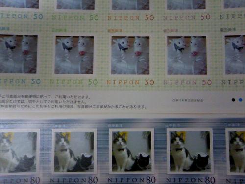 猫ウェディングまとめ☆_f0108346_15493011.jpg