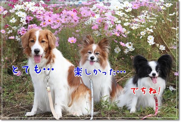 d0013149_127292.jpg