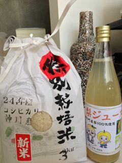 神川町冬桜祭りありがとう!_e0261371_11453039.jpg